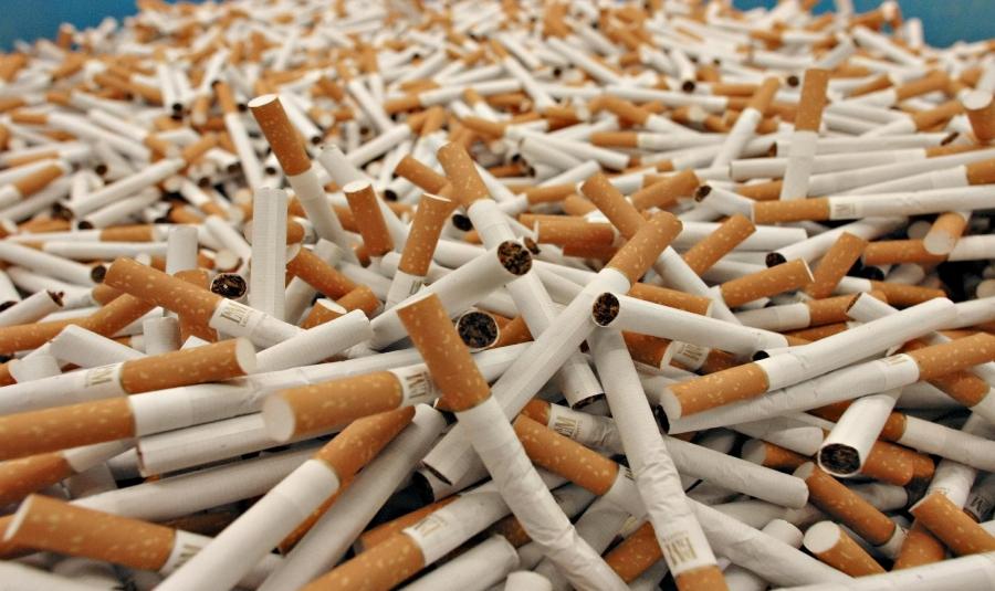 Контрафактных табачных изделий купить электронную сигарету в спб бу
