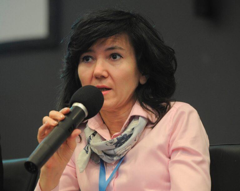 Лидия Михеева: «Разногласия между Общественной Палатой и активистами могли возникнуть из-за несовершенства Федерального Закона»