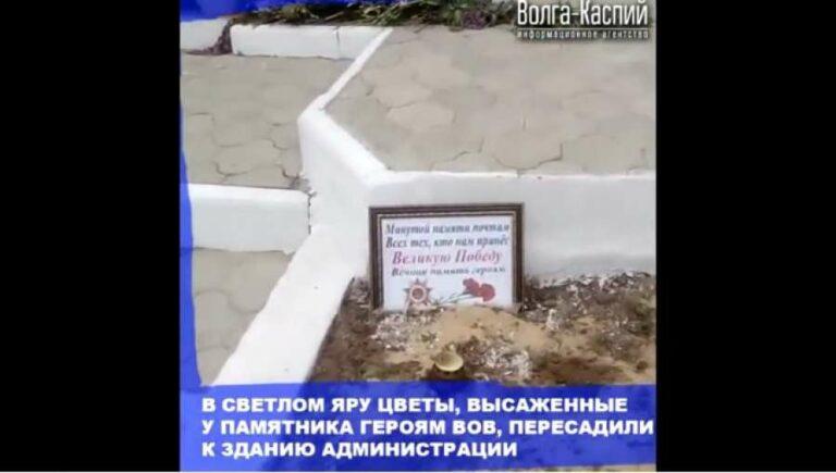 В Светлом Яре цветы, высаженные у памятника героям ВОВ, пересадили к зданию администрации
