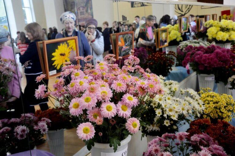 В Волгоградском Роспотребнадзоре рассказали об уловках продавцов с праздничными букетами