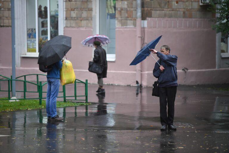 Новая неделя в Волгоградской области начнется с дождя и сильного ветра