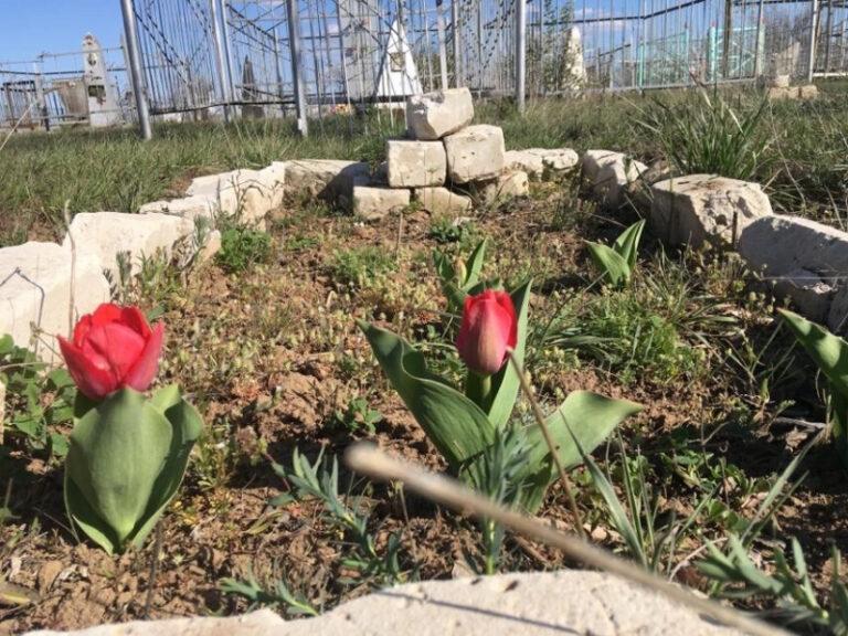 В Знаменске начали приводить в порядок заброшенное кладбище ракетчиков