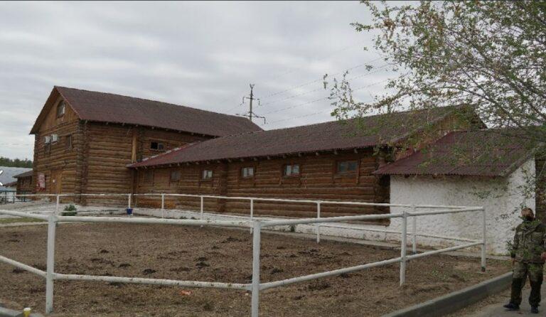 Общественная палата Волгограда заинтересовалась конюшнями «Соснового бора»