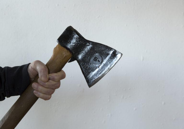 Волгоградцу грозит до 7 лет за самовольную вырубку ясеня у дома