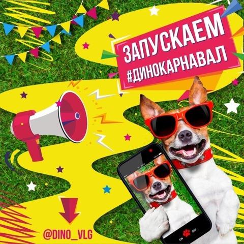Волгоградцев приглашают принять участие в онлайн-карнавале вместе с питомцами