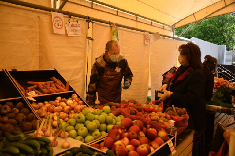 Волгоградские картофель и овощи оказались самыми дешевыми в ЮФО