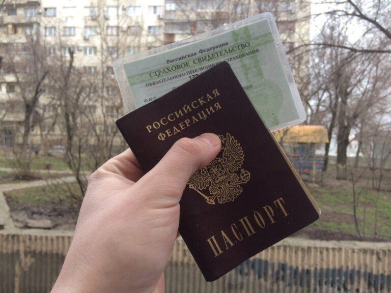 Паспортные данные волгоградцев массово «утекли» в сеть после всероссийского голосования