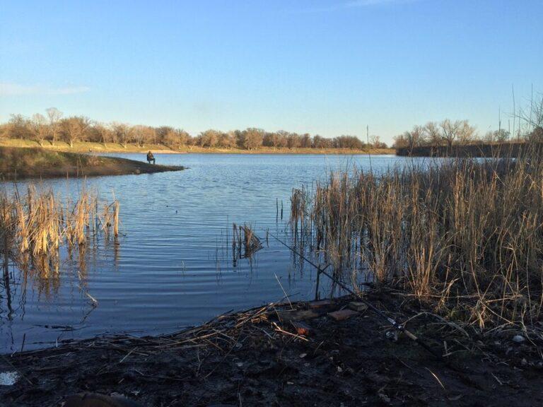 В Волгограде раскрыли убийство женщины, обнаруженной в пруду в Кировском районе