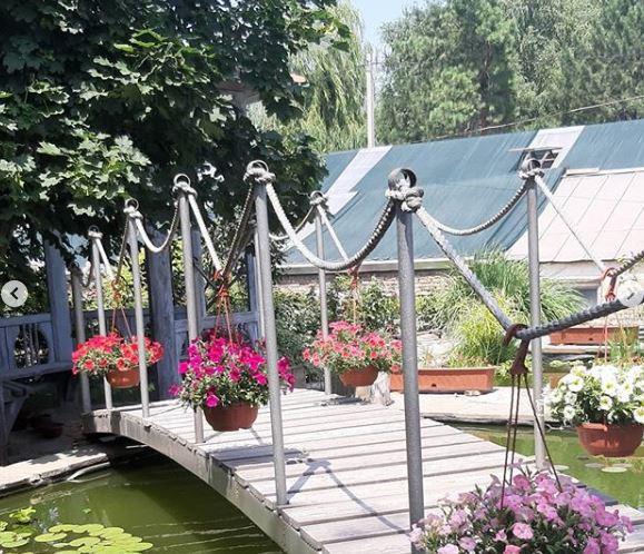 Областной ботанический сад с 15 июля запустил прогулки в Волгограде