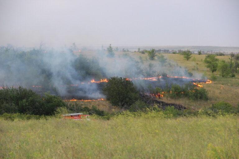 В Волгоградской области всю ночь тушили крупные природные пожары