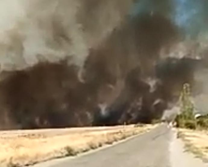 В Волгограде крупный природный пожар вблизи дач попал на видео