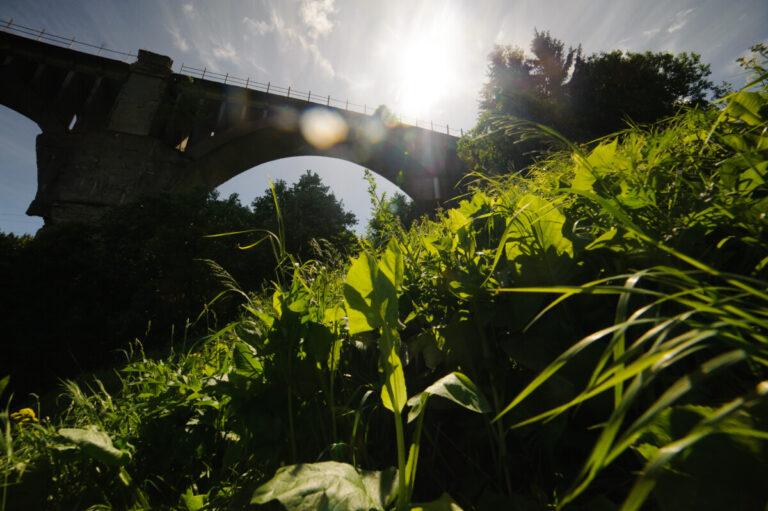 Под Самарой стартовал новый этап строительства моста через реку Сок