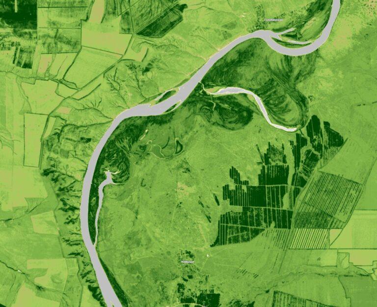Нуждающиеся в лесовосстановлении волгоградские земли оценили из космоса