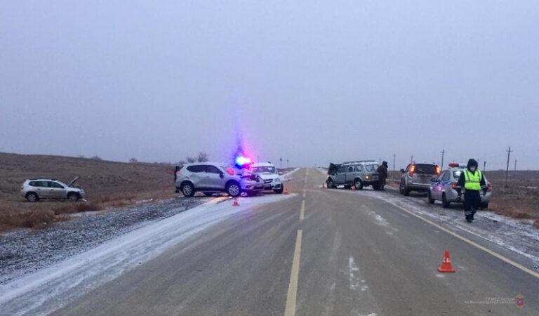 Под Волгоградом сбитая на дороге лошадь стала причиной еще двух аварий