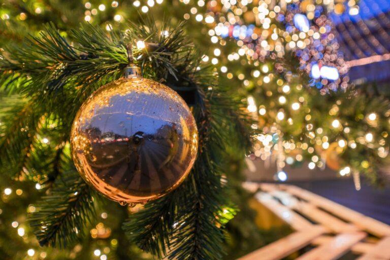 Сияющий фонтан «Искусство» и елка в Александровском саду: Волгоград преображаются к Новому году