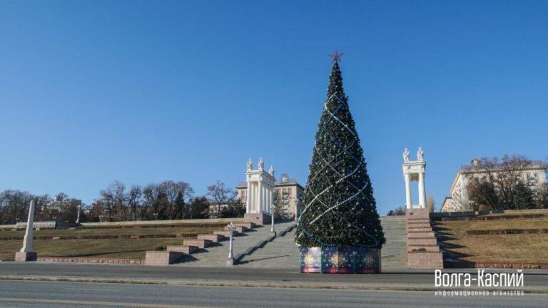 Большинство волгоградцев остались довольны главной городской новогодней елью