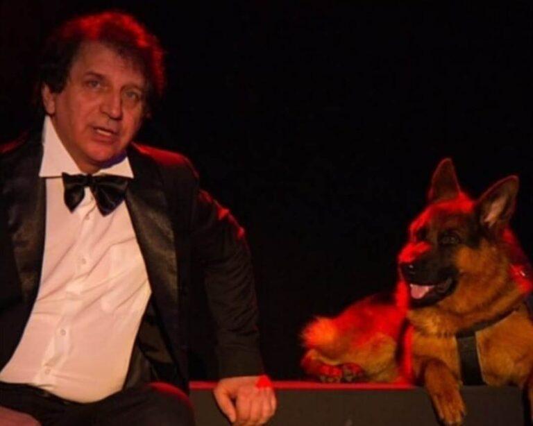 Волгоградский Казачий театр примет на работу четвероногого сотрудника