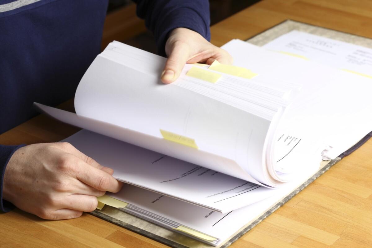 Волгоградские коммунальщики задолжали за разработку документации по озеленению Парка Героев-летчиков