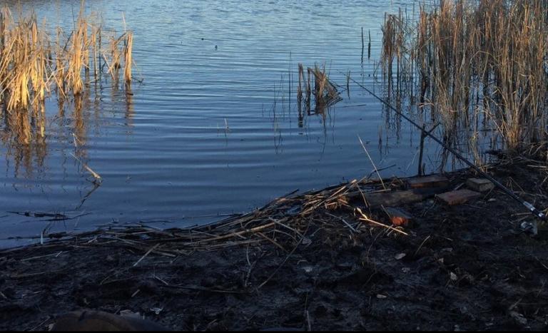 Найдена причина покраснения реки Арчеда в Волгоградской области