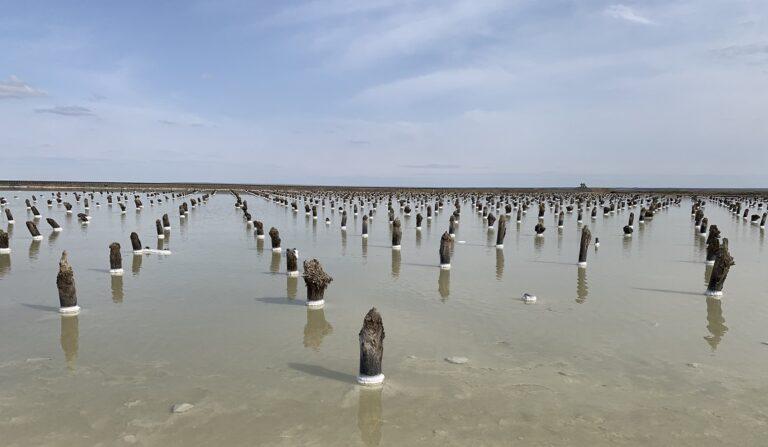 В Астраханской области убитая дорога до озера Баскунчак дождалась ремонта