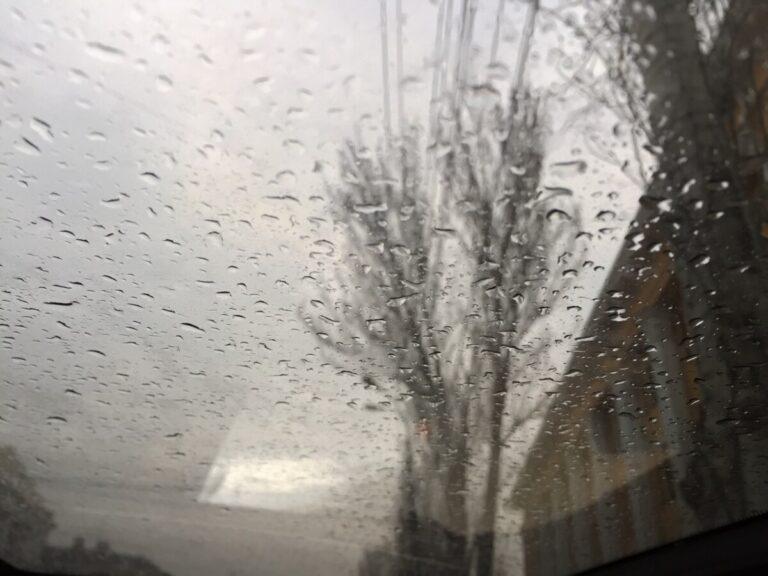 Выходные в Волгограде начнутся с дождей