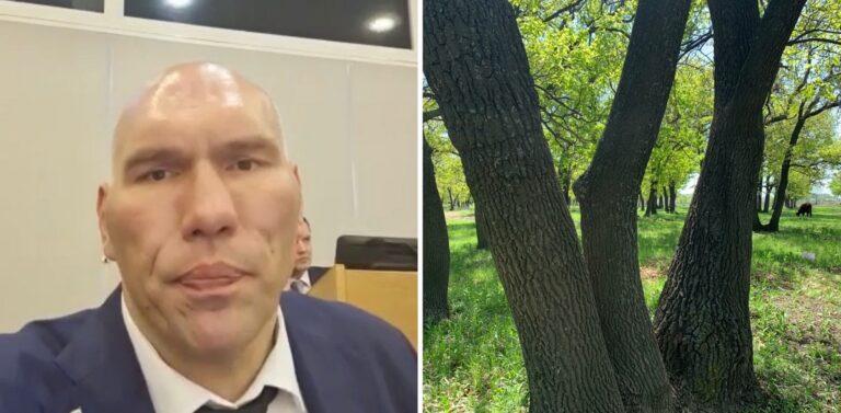 Николай Валуев высказался о перлах губернатора Волгоградской области