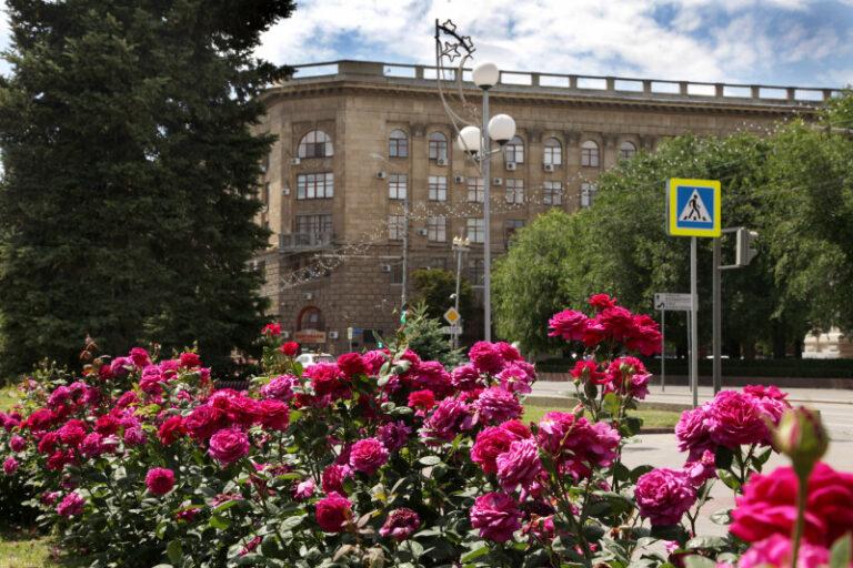 Выпускной в онлайне: Волгоградский медуниверситет отменил все массовые мероприятия