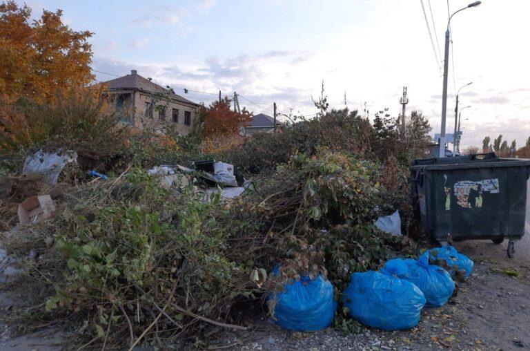 «Мусор не вывозят уже две недели, а оплату требуют»: в Волгограде жители не видят работы регоператора ТКО