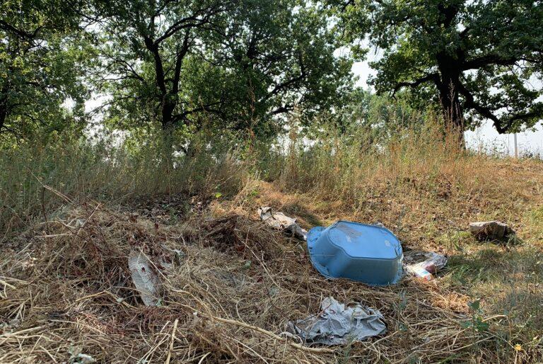 В Волгограде начинают судить первого из вредителей нацпроекта «Экология»