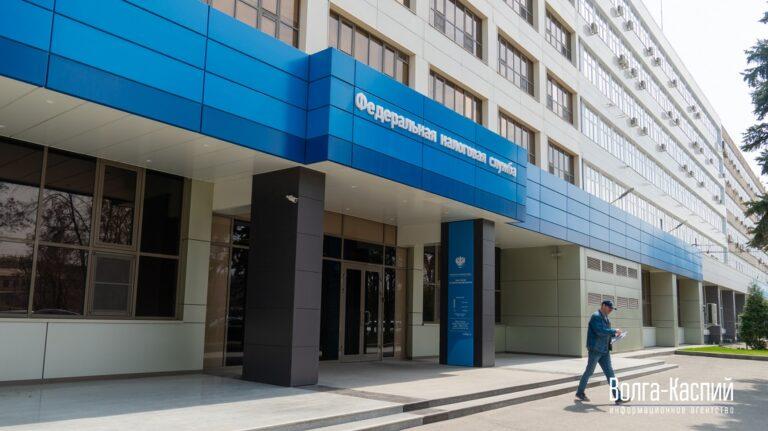 Налоговая напомнила жителям Волгоградской области об обязанности раскрыть правду об имуществе